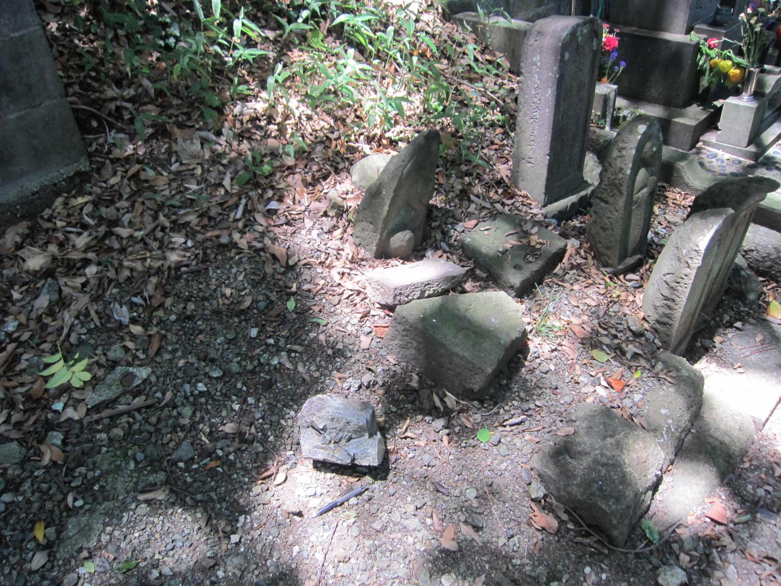 妙蔵寺の裏の蛇紋岩露頭