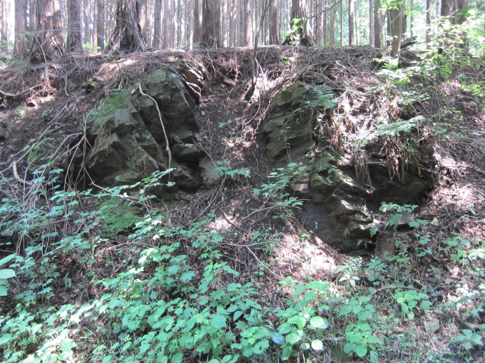 釜伏の滑石片岩露頭