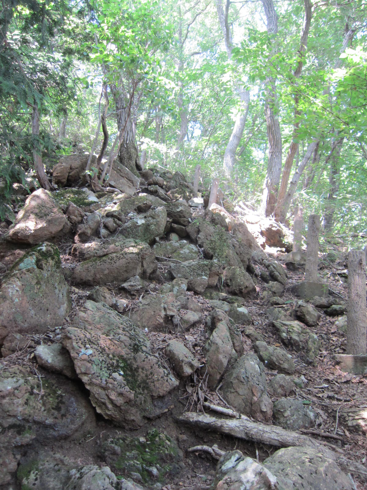 コーリンガ石化している蛇紋岩