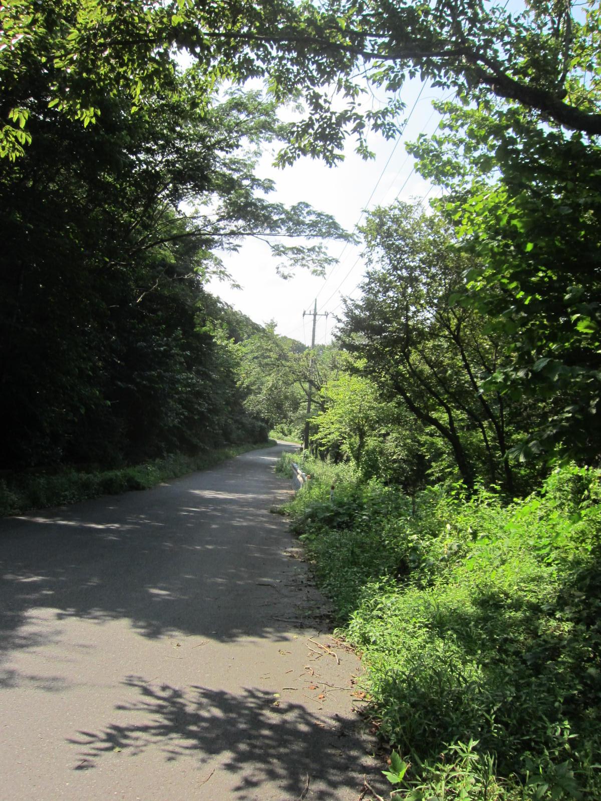 釜伏から長瀞への道