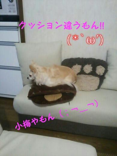 rakugaki_20140926232243988_convert_20141007163233.jpg