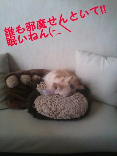 rakugaki_20141006173022505_convert_20141007163313.jpg