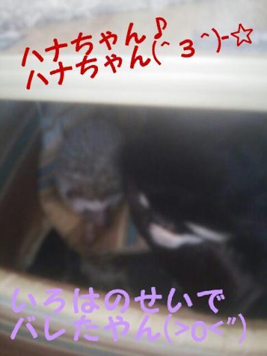 rakugaki_20141023161609360_convert_20141023162712.jpg