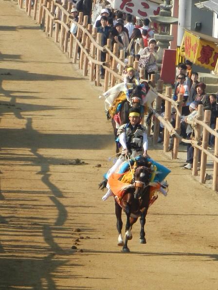菊間祭り お供馬の走りこみ 2