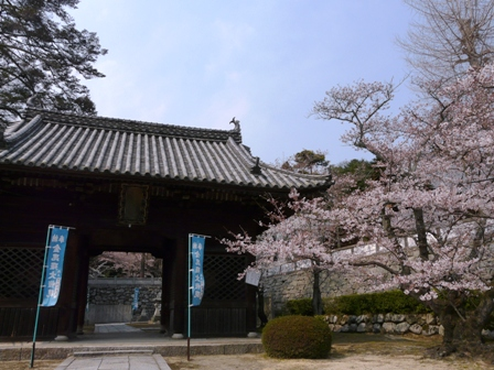 満願寺 1