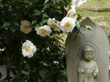 西法寺にて 3