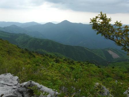 四国カルスト・天狗の森 登山道から