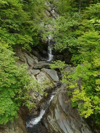 銅山越 登山道から 1