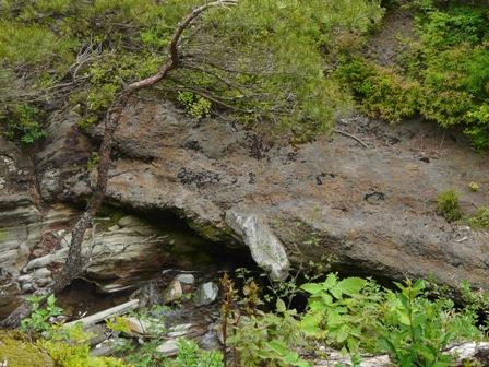 銅山越 登山道から 2