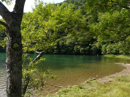 奥日光 (湯ノ湖) 4