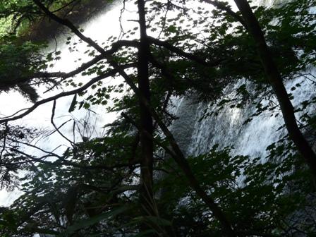 奥日光 (湯滝) 4