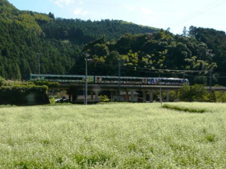 アンパンマン列車 (2000系特急形気動車)