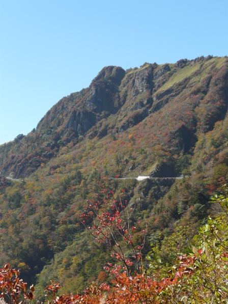 瓶ヶ森林道の紅葉 8