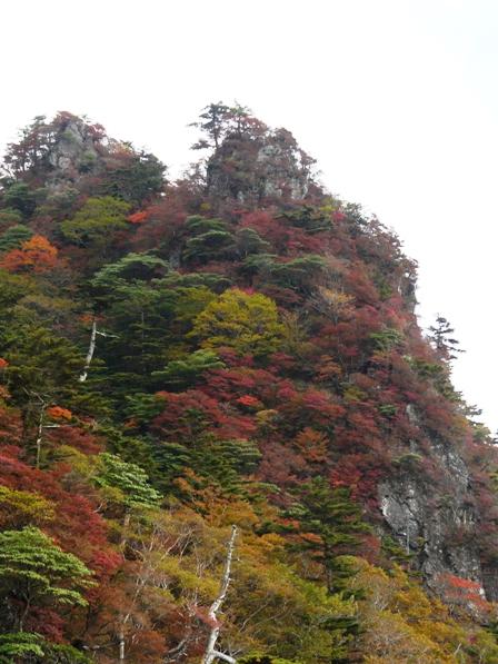 瓶ヶ森林道の紅葉 14