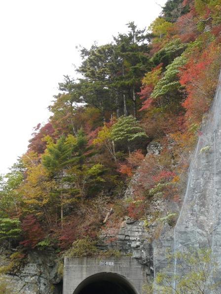 瓶ヶ森林道の紅葉 15