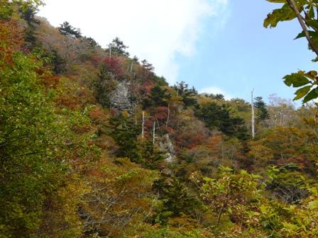 瓶ヶ森林道の紅葉 16