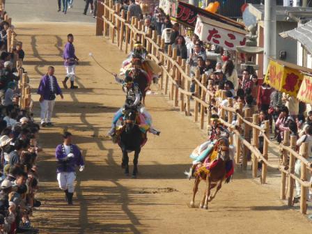菊間祭り お供馬の走りこみ 5