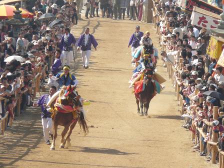 菊間祭り お供馬の走りこみ 7