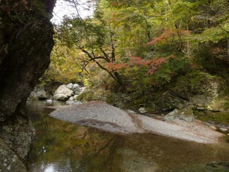 小田深山渓谷 紅葉 15