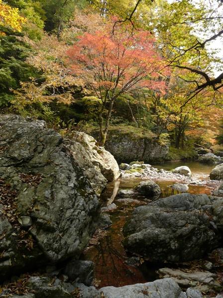 小田深山渓谷 紅葉 16