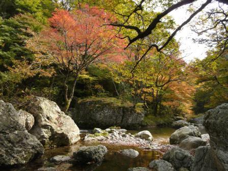 小田深山渓谷 紅葉 18