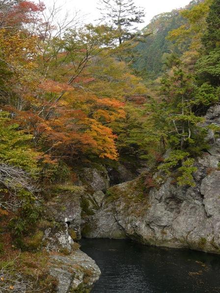小田深山渓谷 紅葉 21