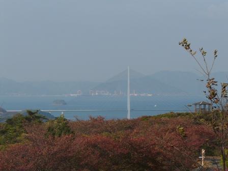 開山公園 紅葉と多々羅大橋 1