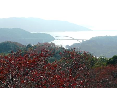 開山公園 紅葉と大三島橋 1