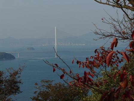 開山公園 紅葉と多々羅大橋 2