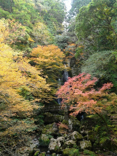 長沢の滝 紅葉 1