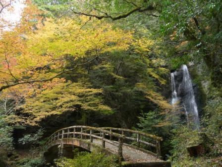 長沢の滝 紅葉 4