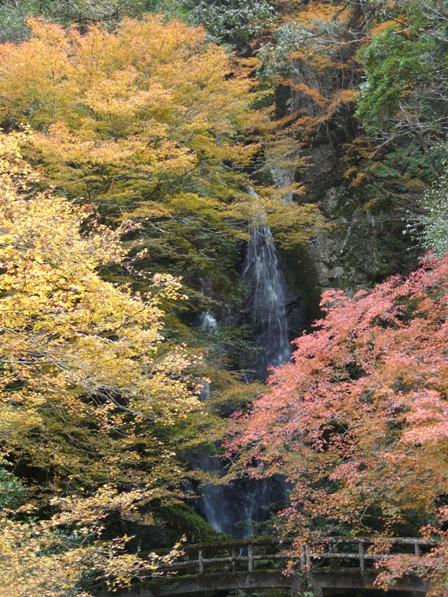 長沢の滝 紅葉 7