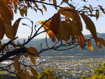 塩ヶ森ふるさと公園 紅葉 3
