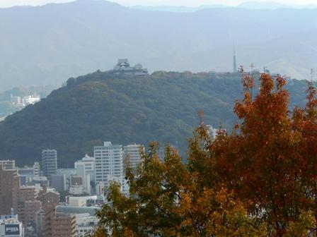 松山総合公園 紅葉 11