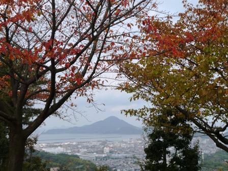 松山総合公園 紅葉 13