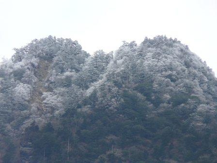 寒風山トンネル付近~瓶ヶ森林道 冬景色 3