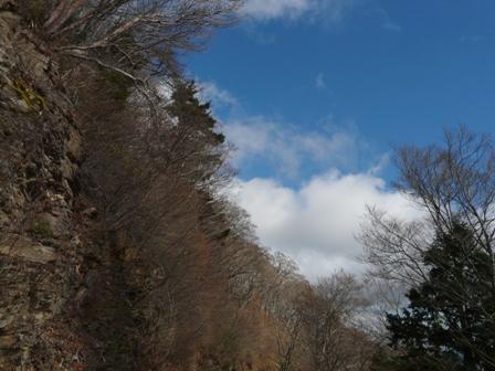 寒風山トンネル付近~瓶ヶ森林道 冬景色 5