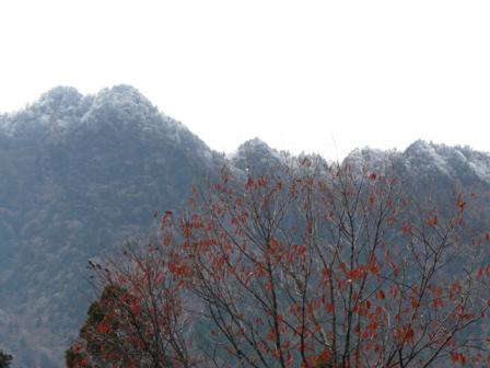 寒風山トンネル付近~瓶ヶ森林道 冬景色 6