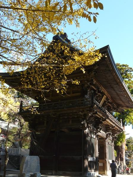 筑波山神社 5