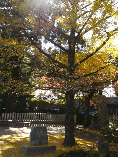 筑波山神社 4