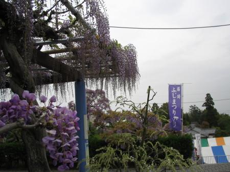 fujifuji-20001.jpg