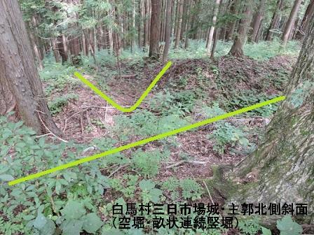 編集_DSCN0054 - コピー