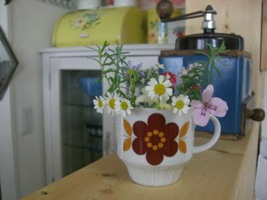きょうの小花