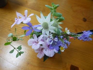 ベランダ小花