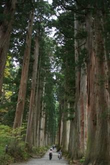 ばんちゃんの旅案内 -日本全国自走の旅--戸隠神社奥社杉並木