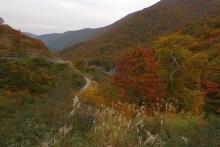 ばんちゃんの旅案内 -日本全国自走の旅--国道157号