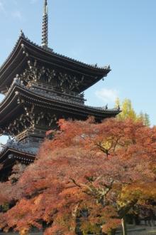 ばんちゃんの旅案内 -日本全国自走の旅--真如堂