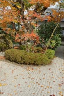 ばんちゃんの旅案内 -日本全国自走の旅--円光寺