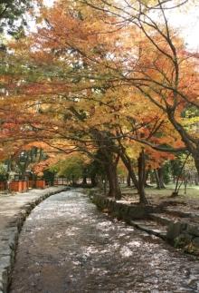 ばんちゃんの旅案内 -日本全国自走の旅--上賀茂神社