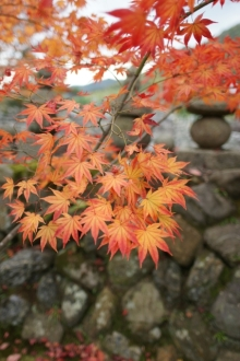 ばんちゃんの旅案内 -日本全国自走の旅--化野念仏寺2